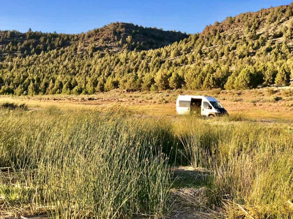 Blooming Where Planted – musings from vanlife